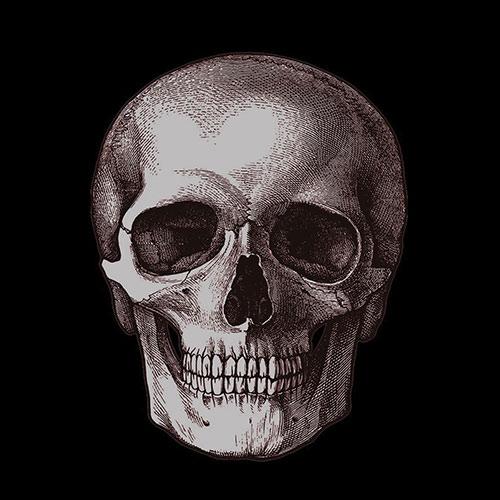 skull500